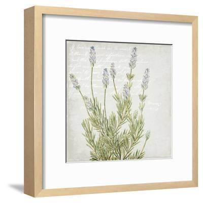 Lavender 1-Kimberly Allen-Framed Art Print
