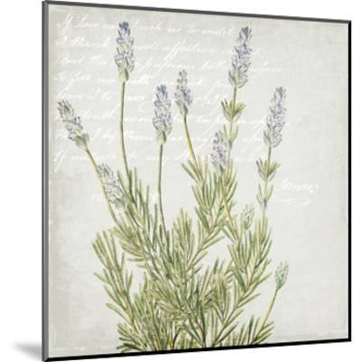 Lavender 1-Kimberly Allen-Mounted Art Print