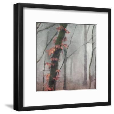 Fall Mood-Kimberly Allen-Framed Art Print