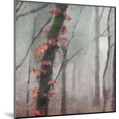 Fall Mood-Kimberly Allen-Mounted Art Print
