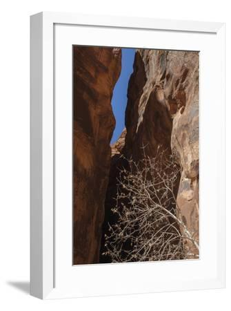 A Shaded Spot-Andrew Geiger-Framed Giclee Print