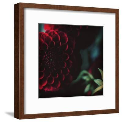 Rouge-Ingrid Beddoes-Framed Art Print