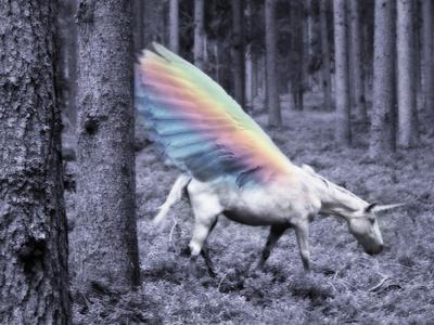 Chasing The Unicorn-Emanuela Carratoni-Framed Art Print