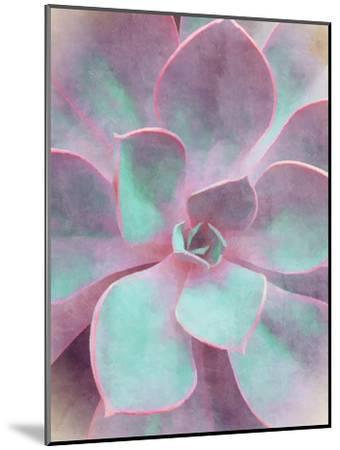 Sweet Succulent-Emanuela Carratoni-Mounted Art Print