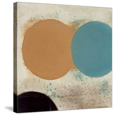 Terra Circles I-David Skinner-Stretched Canvas Print