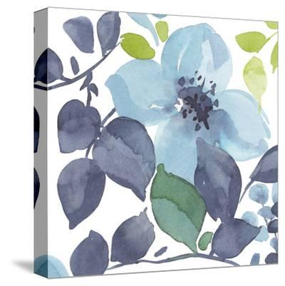 Slumber Shades II-Sandra Jacobs-Stretched Canvas Print