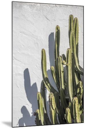 Estremoz-Alan Copson-Mounted Giclee Print