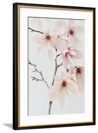 Taishi-Irene Suchocki-Framed Giclee Print