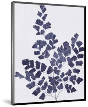 Ink Leaves-The Vintage Collection-Mounted Giclee Print