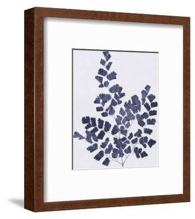 Ink Leaves-The Vintage Collection-Framed Giclee Print