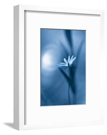 For Elise--Framed Art Print