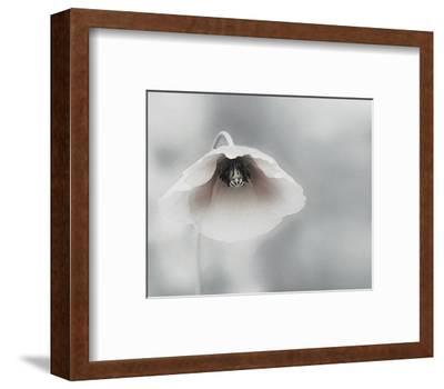 Ephemeral Beauty--Framed Art Print
