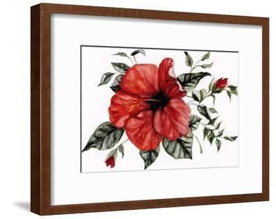 Red Hibiscus-Shealeen Louise-Framed Art Print