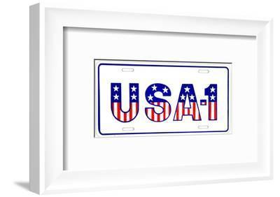 USA #1--Framed Tin Sign