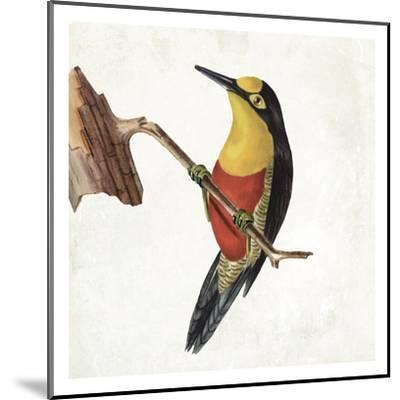 Lovely Birds 4-Jace Grey-Mounted Art Print