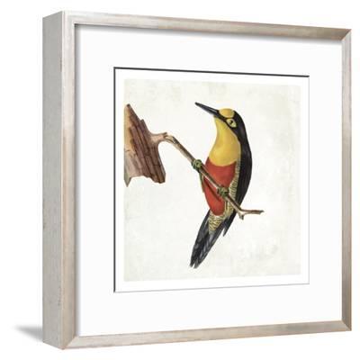 Lovely Birds 4-Jace Grey-Framed Art Print