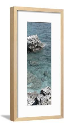 Hidden Paradise 2-Sheldon Lewis-Framed Art Print