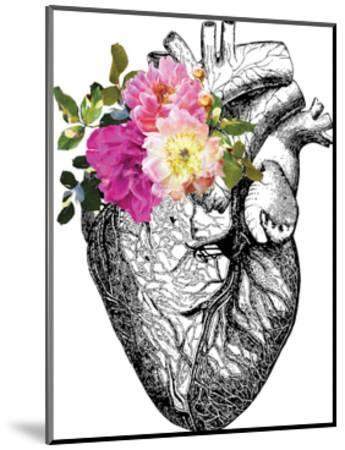 Heart Anatomical Floral-Amy Brinkman-Mounted Art Print