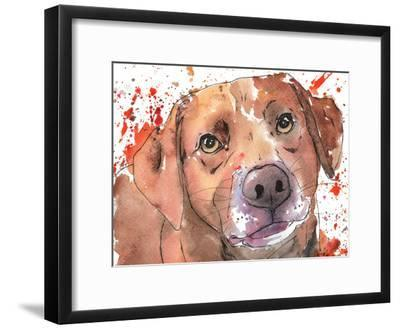 Chocolate Lab-Allison Gray-Framed Art Print