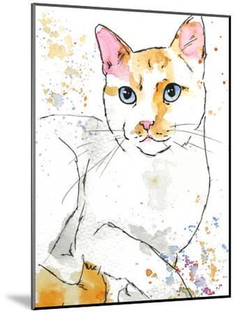 Orange Siamese-Allison Gray-Mounted Art Print