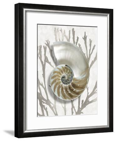 Shell Coral Silver II-Caroline Kelly-Framed Giclee Print