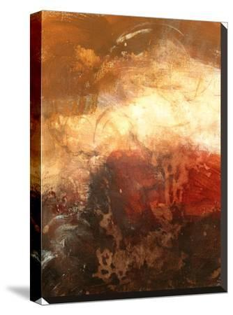 Autumn Warmth-Destiny Womack-Stretched Canvas Print