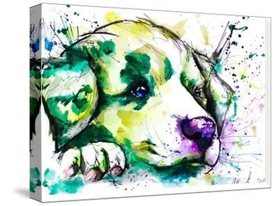 Vivid Aussie Pup-Allison Gray-Stretched Canvas Print