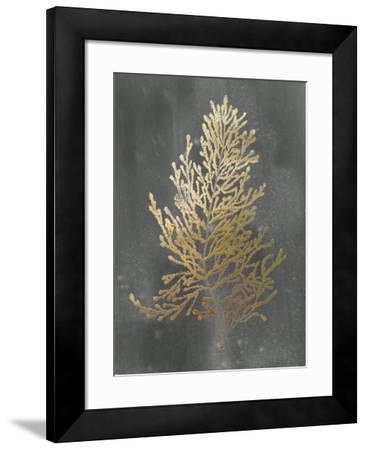 Gold Foil Algae IV on Black Wash-Jennifer Goldberger-Framed Art Print