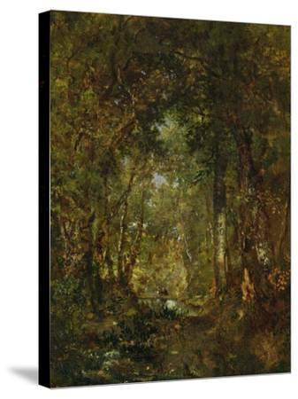 In the Wood at Fontainebleau-Th?odore Rousseau-Stretched Canvas Print