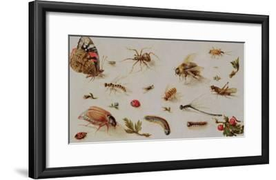 A Study of Insects-Jan Brueghel the Younger-Framed Giclee Print