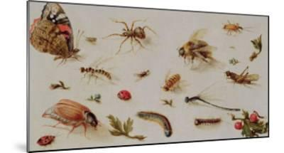A Study of Insects-Jan Brueghel the Younger-Mounted Giclee Print