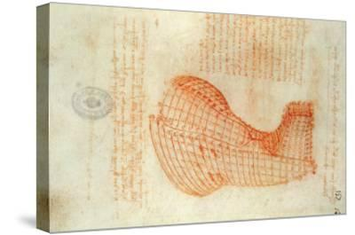 Codex Madrid 1/57-R Study for a Sculpture of a Horse-Leonardo da Vinci-Stretched Canvas Print