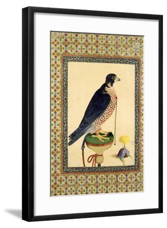 Falcon, from a Moraqqa--Framed Giclee Print