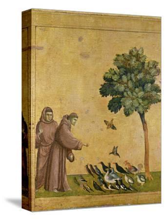 St. Francis of Assisi Preaching to the Birds-Giotto di Bondone-Stretched Canvas Print