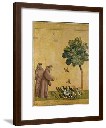 St. Francis of Assisi Preaching to the Birds-Giotto di Bondone-Framed Giclee Print