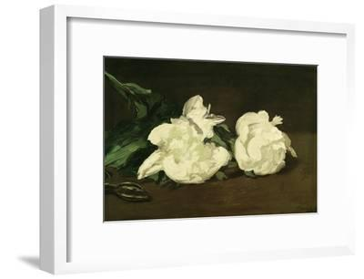 Branch of White Peonies and Secateurs, 1864-Edouard Manet-Framed Giclee Print