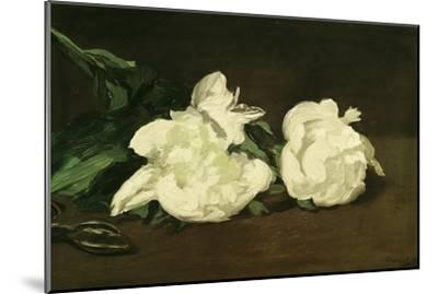 Branch of White Peonies and Secateurs, 1864-Edouard Manet-Mounted Giclee Print