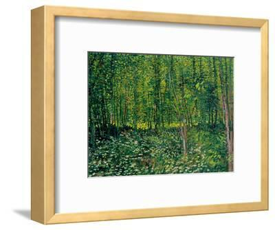 Trees and Undergrowth, c.1887-Vincent van Gogh-Framed Premium Giclee Print