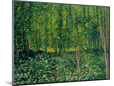 Trees and Undergrowth, c.1887-Vincent van Gogh-Mounted Premium Giclee Print