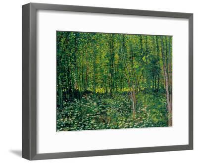 Woods and Undergrowth, c.1887-Vincent van Gogh-Framed Giclee Print