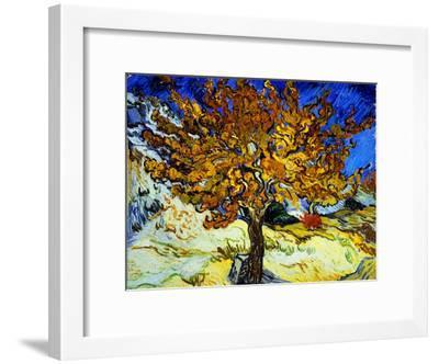 Mulberry Tree, c.1889-Vincent van Gogh-Framed Giclee Print