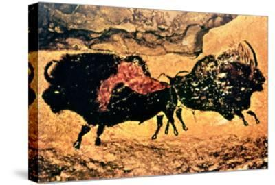 Rock Painting of Bison, circa 17000 BC--Stretched Canvas Print