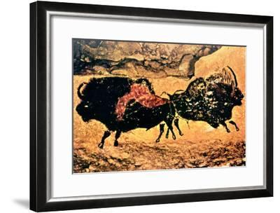 Rock Painting of Bison, circa 17000 BC--Framed Giclee Print