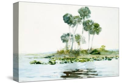 St. Johns River, Florida, 1890-Winslow Homer-Stretched Canvas Print
