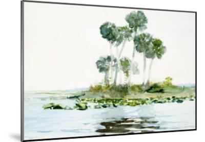 St. Johns River, Florida, 1890-Winslow Homer-Mounted Giclee Print