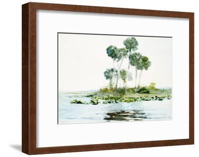 St. Johns River, Florida, 1890-Winslow Homer-Framed Giclee Print