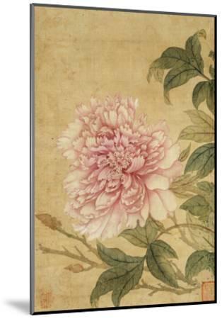 Peony-Yun Shouping-Mounted Giclee Print