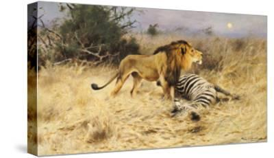 A Lion with His Prey-Wilhelm Kuhnert-Stretched Canvas Print