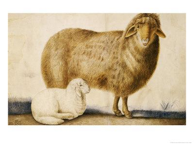 A Ewe and Her Lamb, circa 1850-Abu'l-hasan Ghaffari Kashani-Stretched Canvas Print