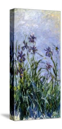 Iris Mauves, 1914-1917-Claude Monet-Stretched Canvas Print
